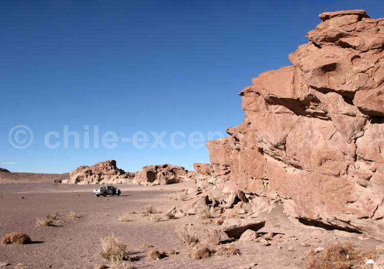 Site de Hierbas Buenas