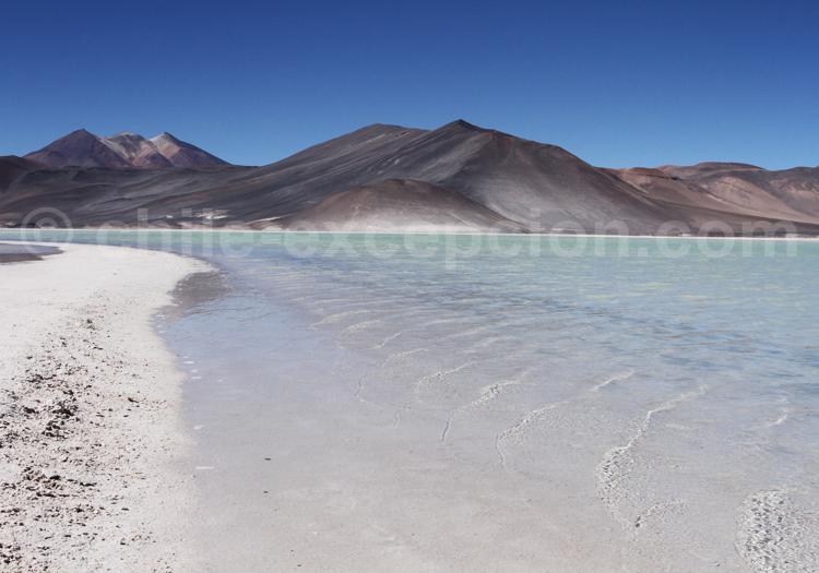 Piedras Rocas, Atacama