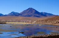 Laguna altiplanica