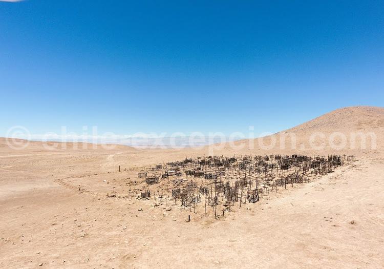 Hauts plateaux, Chili - Crédit Bernard Courtois