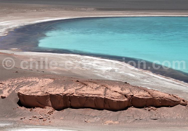 Lagune de l'Altiplano, Chili