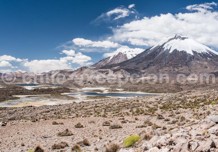 Hauts plateaux, Chili