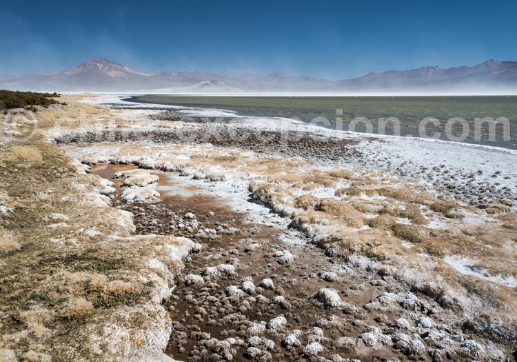Désert du nord chilien