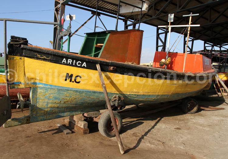Port de pêche, Arica, Chili