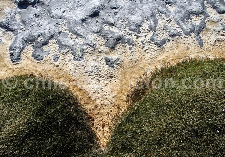 Vue sauvage, nature du Chili