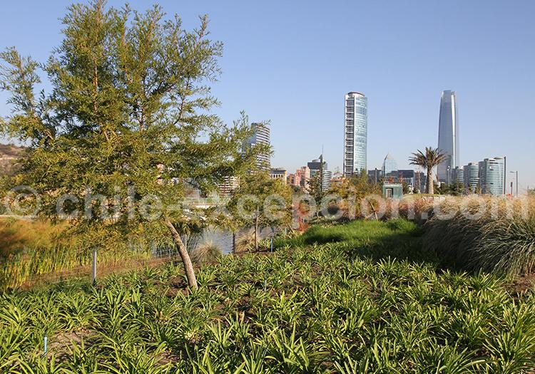 Parque Bicentenario, capitale du Chili