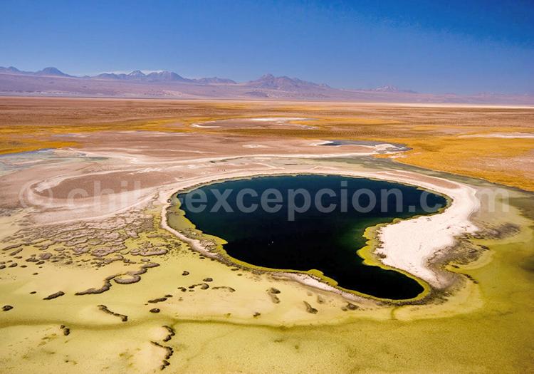 Voyage autotour San Pedro de Atacama