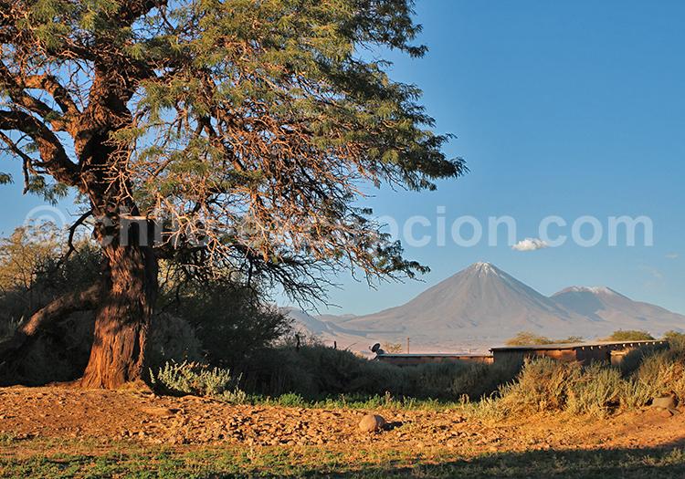 Séjour sur mesure, Atacama