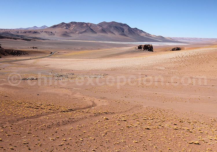Visite exclusive, Monjes de la Pacana, Chili