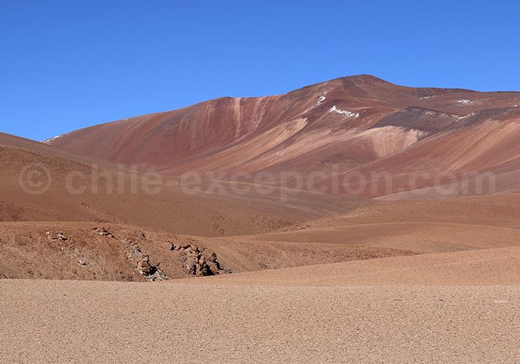 Visite guidée Salar de Pujsa, Chili