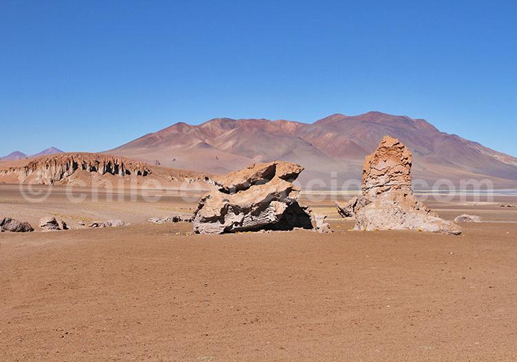 Monjes de la Pakana, Chili