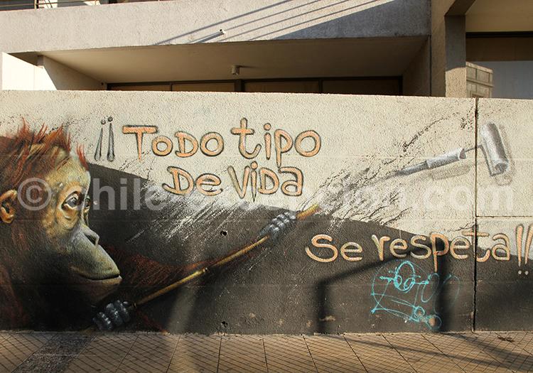 Pensées et messages du Street Art du Chili