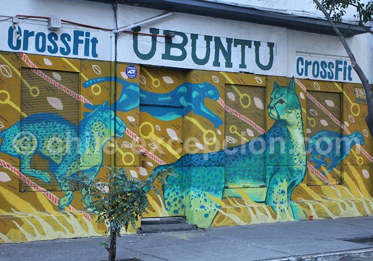 Artiste de rue Faya quartier Bellavista