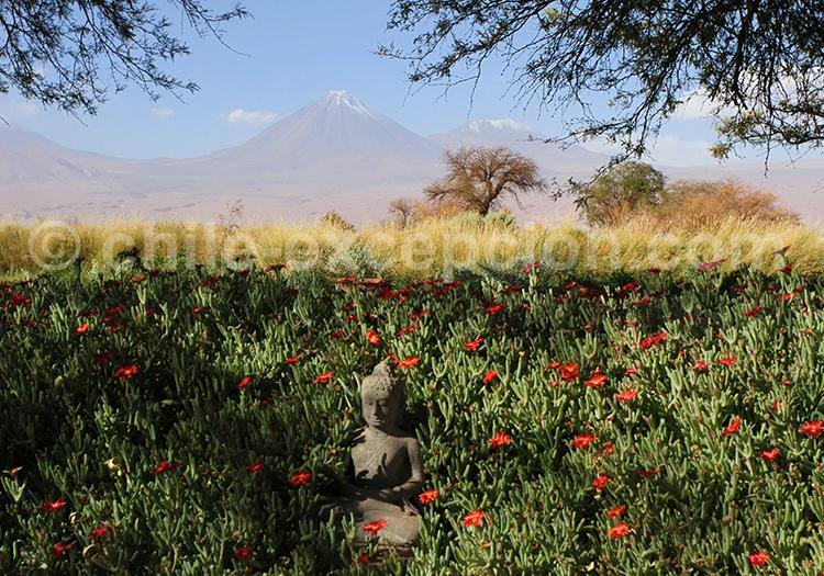 Vacances au Chili, San Pedro de Atacama