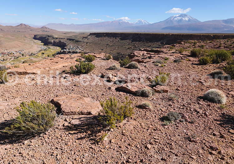 Combiné Nord du Chili, Bolivie