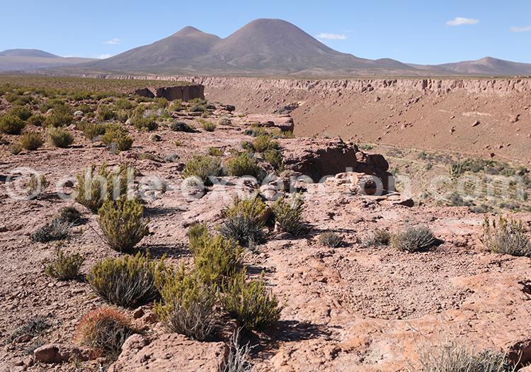 Territoire Atacameños