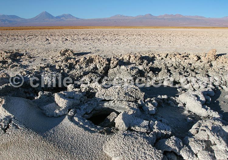 Laguna Cejar, San Pedro de Atacama