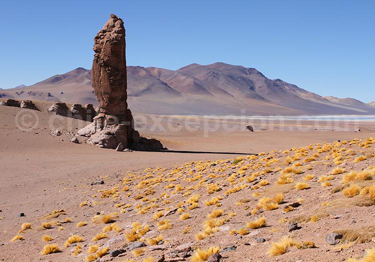 Voyage autotour, désert d'Atacama