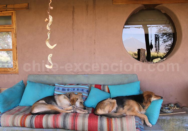 Hôtels à San Pedro de Atacama, Chili