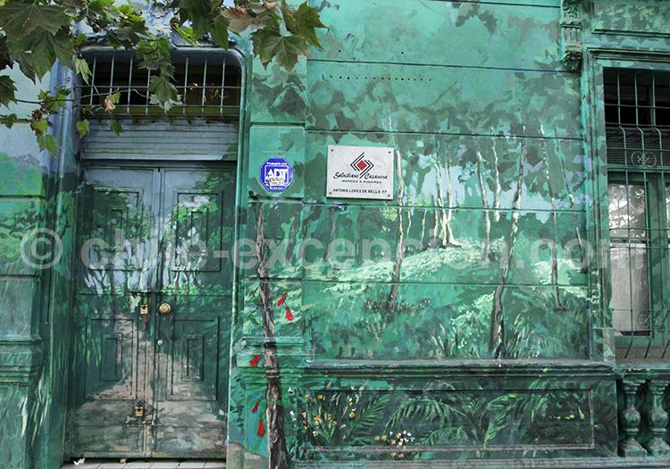 Art de rue représentant la nature, Chile