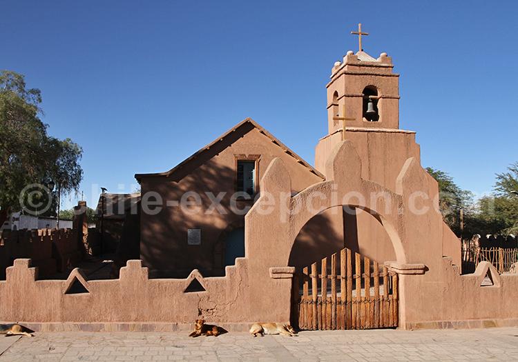 Voyage à San Pedro de Atacama, Chili