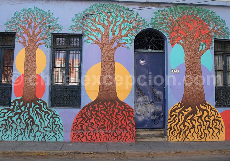 Style d'art de rue, Chili