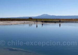 Lagune Piedra, San Pedro de Atacama
