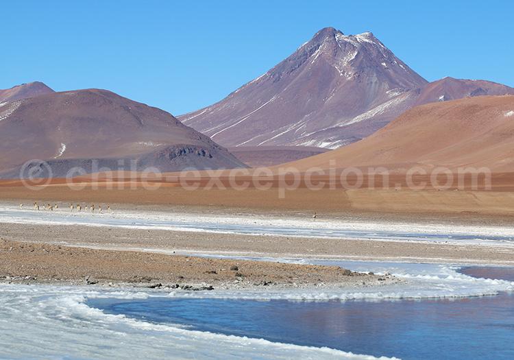 Voyage au Chili, Volcan Pili