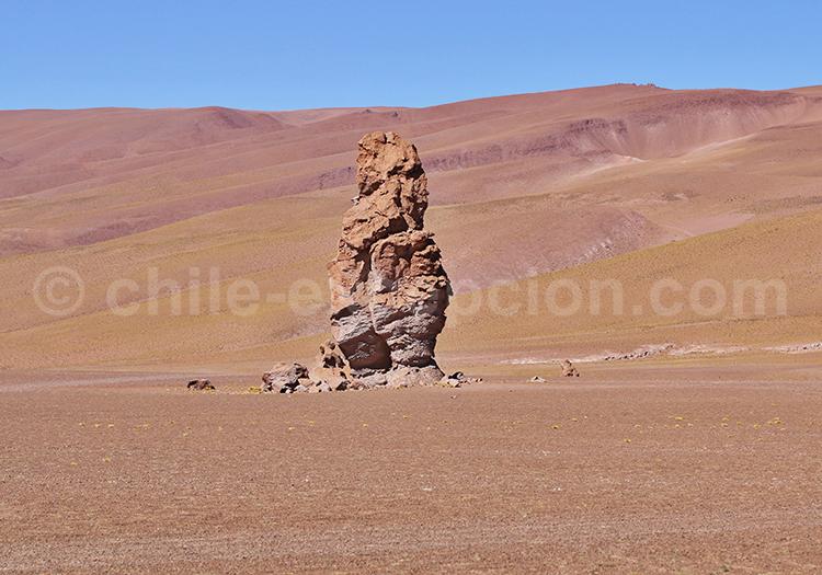 Curiosité du désert d'Atacama, Chili
