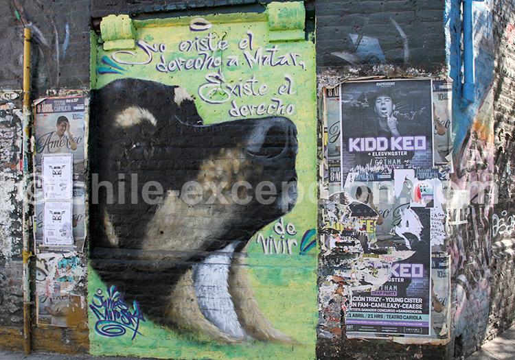Message provenant du Street Art