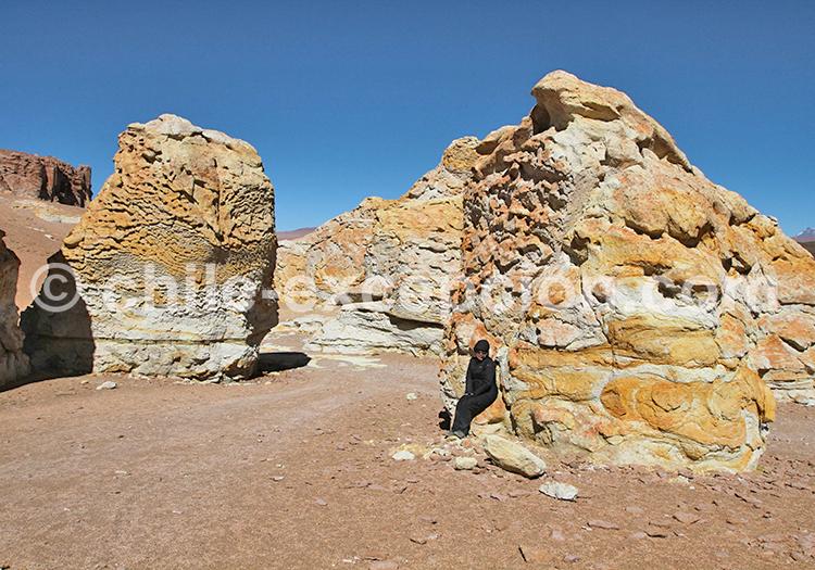 Reserva Nacional Los Flamencos, Atacama