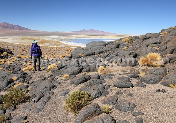 Randonnée dans le Nord du Chili