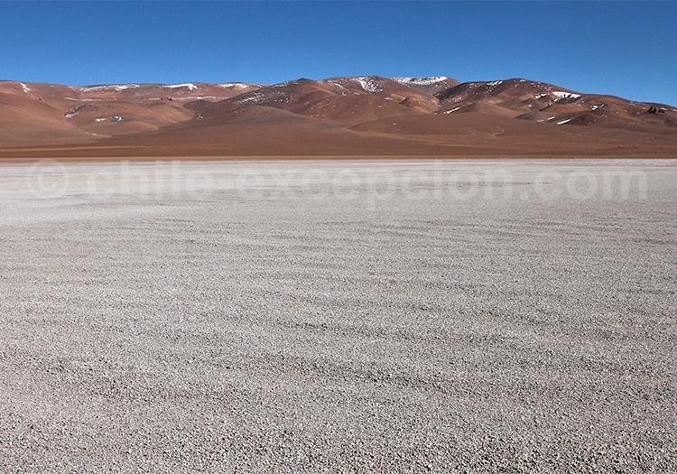 Salar de Pujsa, désert d'Atacama