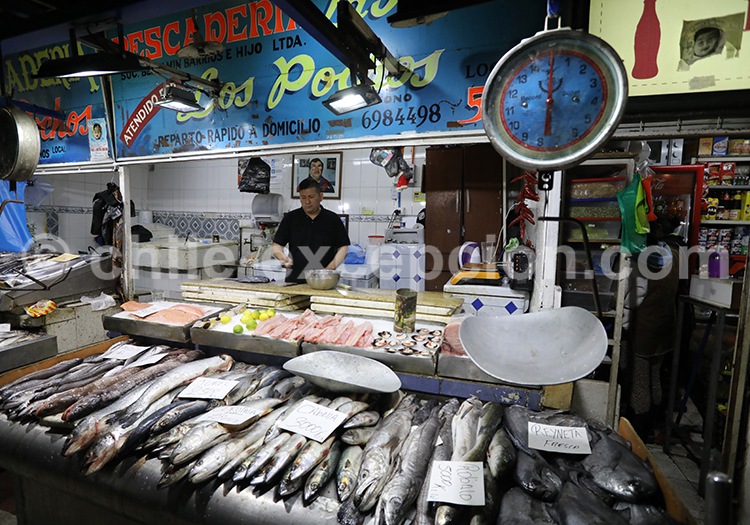 Marché aux poissons, Santiago