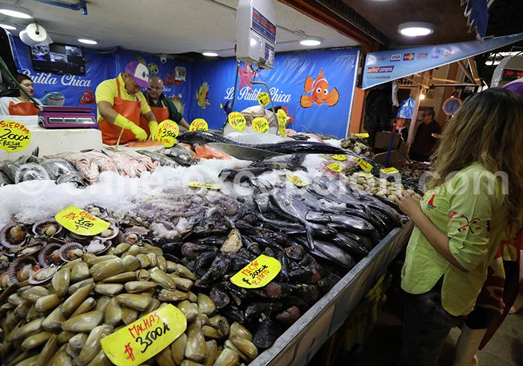 Marché aux crustacés, Santiago