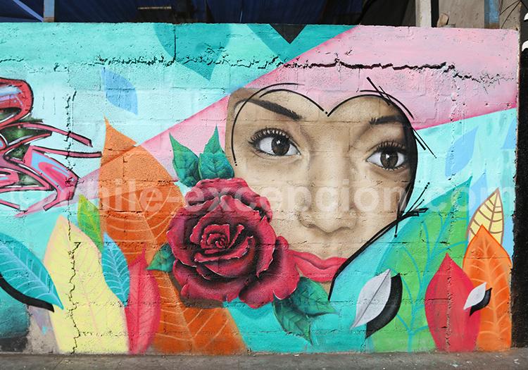 Art de rue d'Iquique, street art