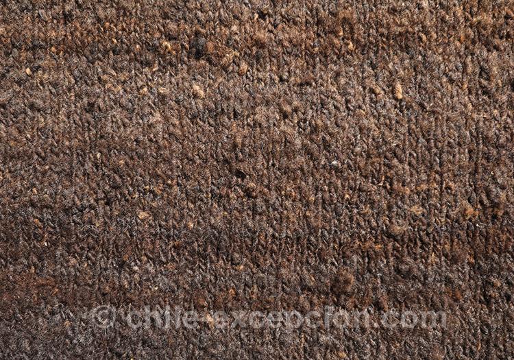 Les pièces tricotés du Chili avec l'agence de voyage Chile Excepción