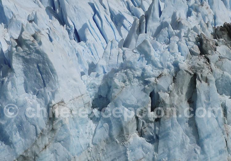 Héritier de l'âge de glace