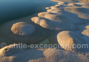 Bordure de sel, lagune de l'Atacama