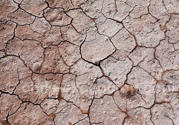Désert de sel à Atacama
