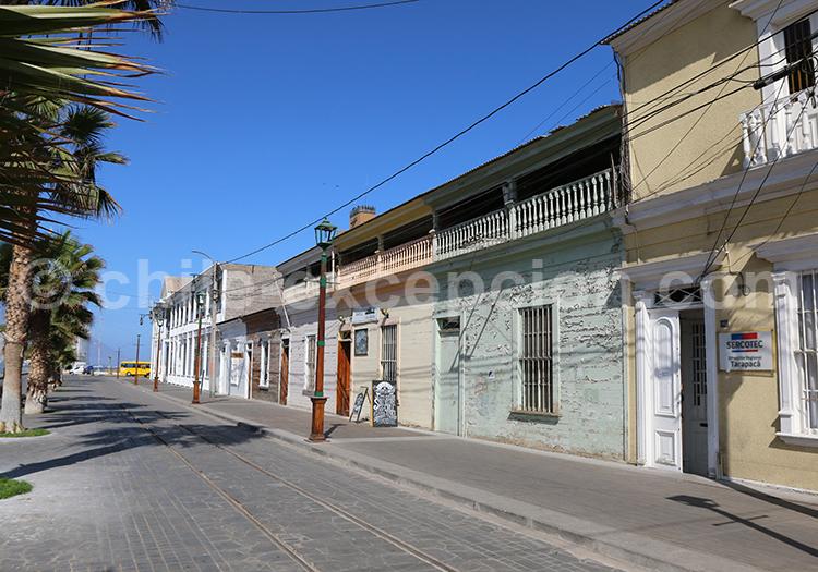 Que voir à Iquique, Chili