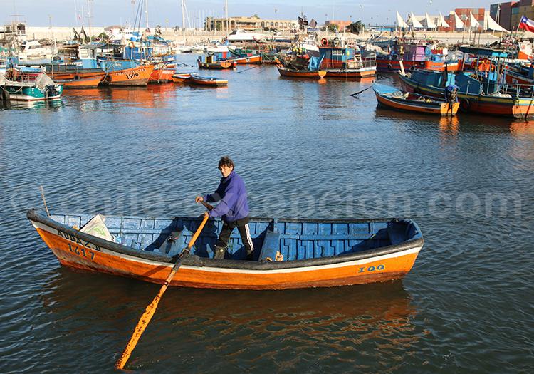 La pêche à Iquique, Chili