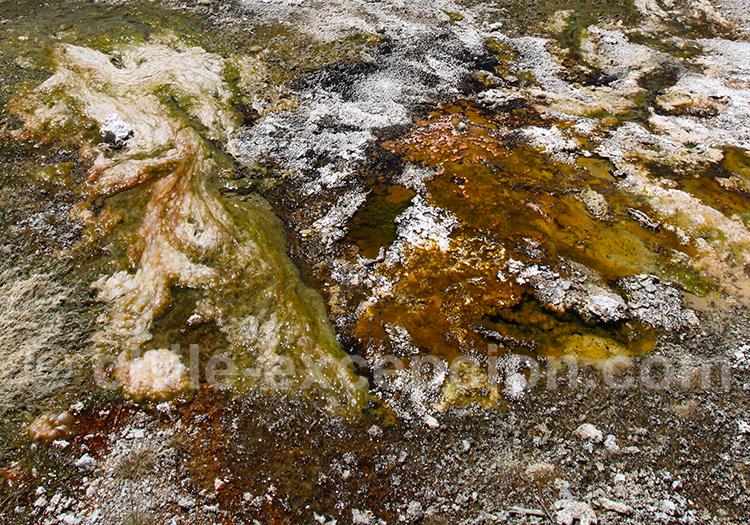Les couleurs de Nevado Tres Cruces