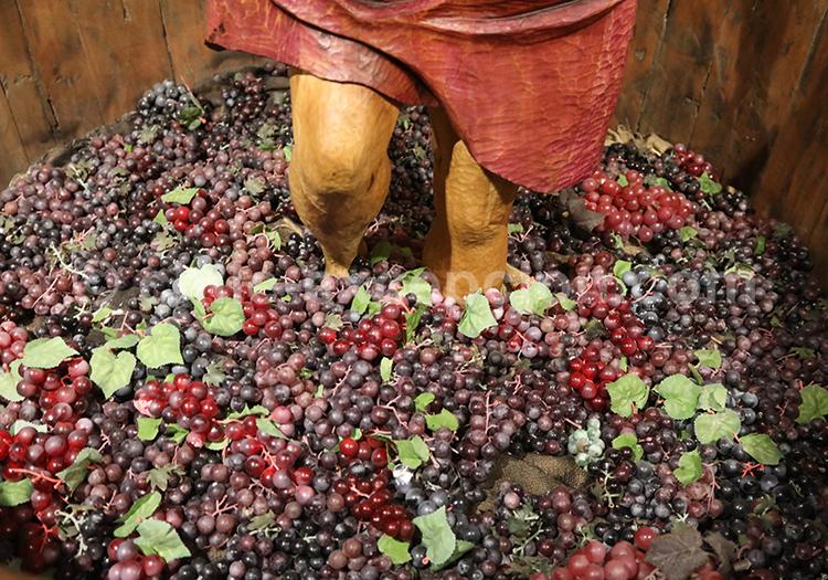 Production de vins chiliens, Chili avec l'agence de voyage Chile Excepción