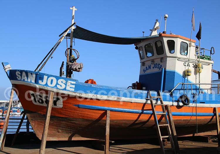 Port de pêche, Iquique, Nord du Chili