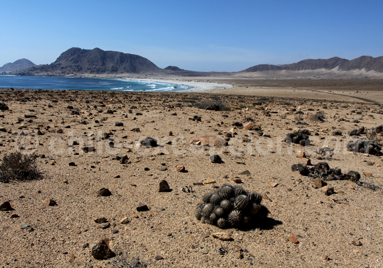Playa blanca- Parc Pan de Azucar