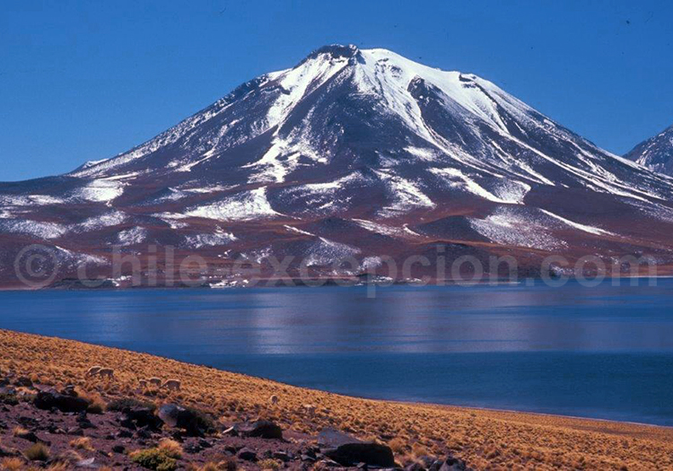 Volcan et Lagune Miscanti