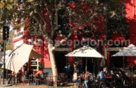 restaurant dans le quartier ed Bellavista