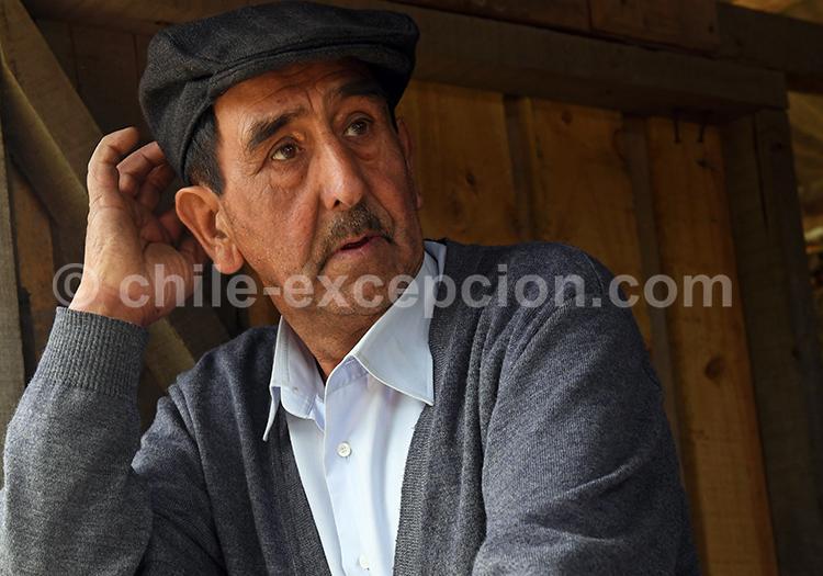 Travailleur de la région des lacs et volcans, Chili