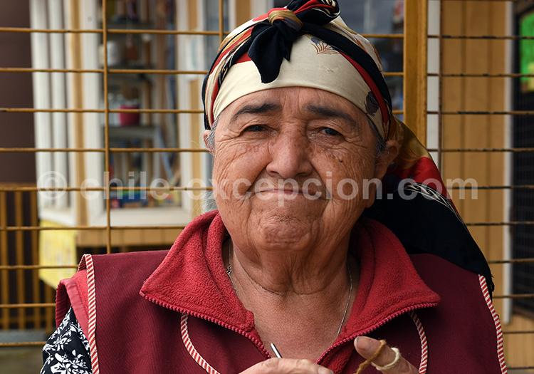 Peuple mapuche du Sud du Chili